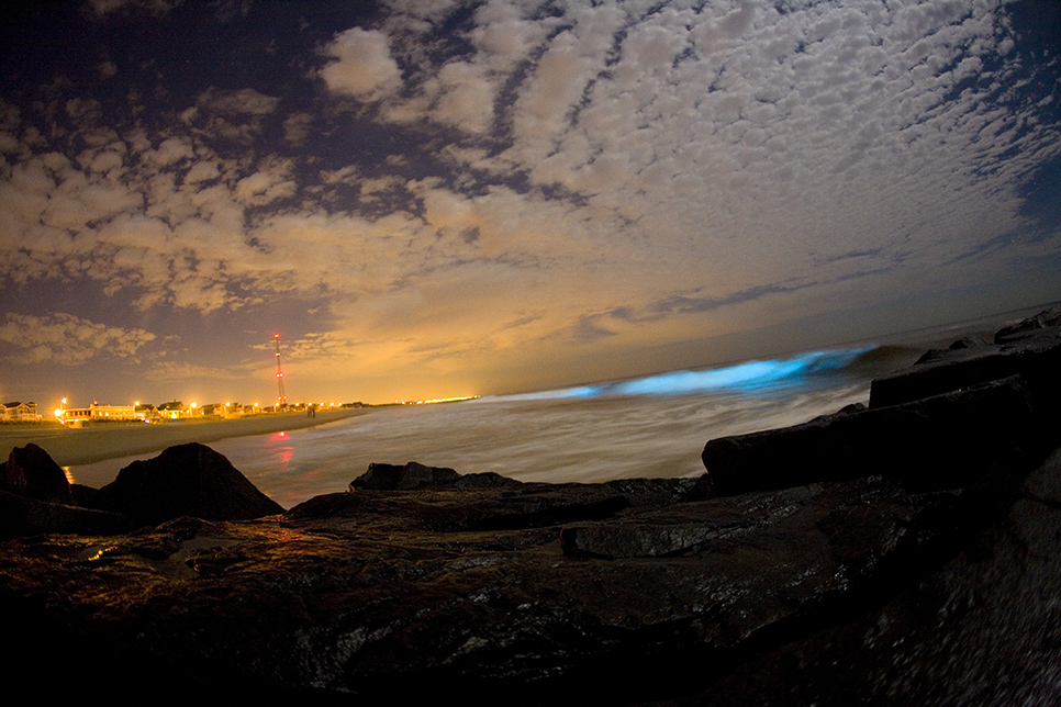 Bioluminescence captured on breaking waves.