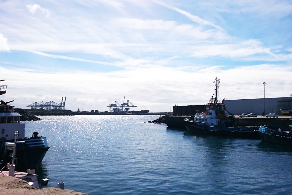 Sines service port