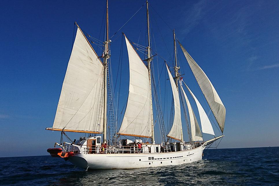 tall ship blue clipper rdv 2017